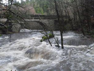 Crue de la Corrèze au pont de Neupont le 16/12/2011