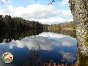 L'étang de Ruffaud à Gimel les Cascades