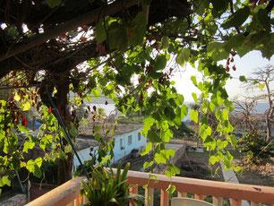 Blick von der Casa aus Siboney