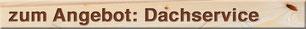 titel Angebot Dachservice Dachkontrolle Dachreparatur Dachreinigung Dachrinnenreinigung Sonja und Dani Vogt Holzbau Allmeindstrasse 27 8855 Wangen