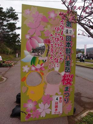 桜の開花状況 桜まつり当日 2020/01/18