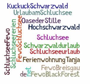 schwarzwaldurlaub - schluchseeurlaub - fewoschluchsee - ferienwohnung tanja