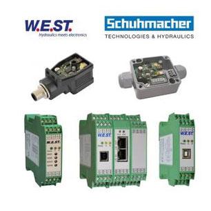 Elektronik W.E.ST. Ansteuerelektronik
