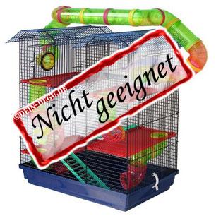 Nicht geeigneter Degu Käfig