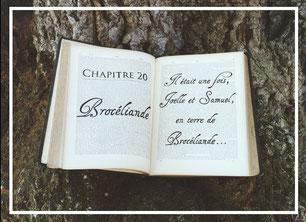 Vieux livre ouvert, chapitre 20 du mariage, balade en Brocéliande, décoration de la vidéo des 20 ans de mariage par My Daydream Wedding, wedding planner et décoratrice de mariage à Lille et dans le Nord