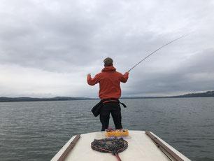 Hecht, Egli, Barsch, Zander, Pike, Esox, Murtensee, Angeln, Fischen, Fischerboot, Seeland, Esox, Perche
