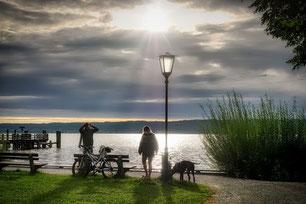 Un chien et sa maîtresse se promènent sur un chemin qui borde la mer par coachcanin 16 educateur canin en charente à domicile