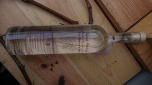 Armagnac blanc en bio, Le premier Armagnac