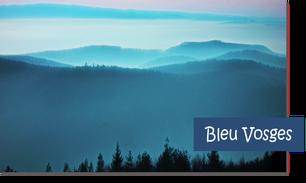 Laine française. Agneau Mérinos. Bleue