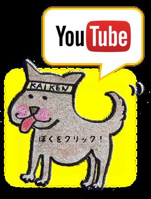 ↑クリックするとYouTubeのKAIKENチャンネルに飛びます