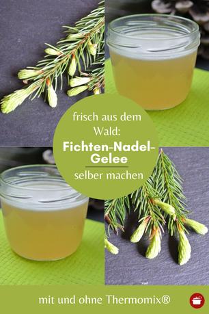 Fichtennadel-Gelee einkochen #fichtenhonig #thermomixrezept #kräuter