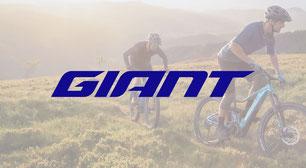Alle e-MTB Modelle von Giant bei e-MTB.de entdecken