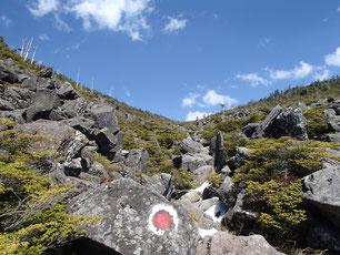 八ヶ岳 雪山 ガイド 講習 山小屋
