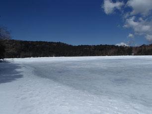 白駒池 雪山 ガイド