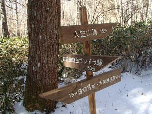 入笠山 スノーシュー ガイド