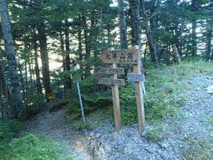仙丈ヶ岳 藪沢コース 登山 ガイド