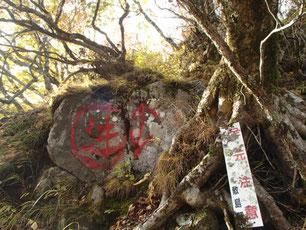 茅ヶ岳 観音峠 登山 ガイド