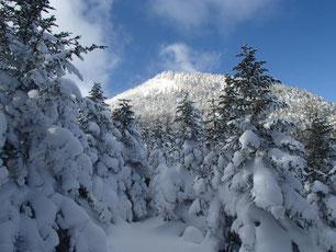 樹氷の先に雨池が美しい。頑張ればこんな景色も期待できる。