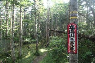 阿弥陀岳 登山 ガイド
