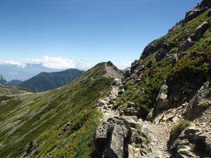 仙丈ヶ岳 登山 ガイド