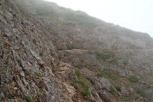 権現岳 登山 ガイド