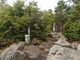 苔の森ツアー ガイド