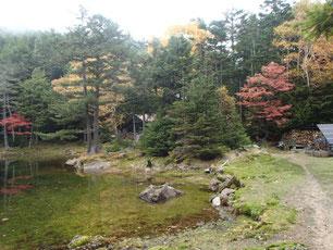八ヶ岳 紅葉