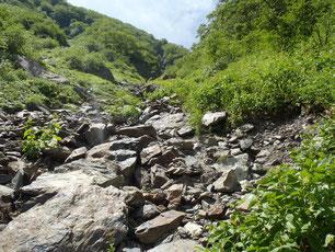北岳 登山 ガイド