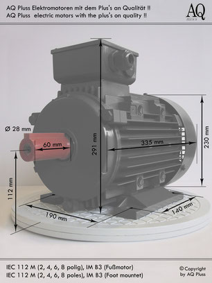 Elektromotor 4  4 polig B3 Synchrondrehzahl 1500 U/min  Nenndrehzahl ca.  1400 U/min IEC Baugröße 112 M Nr.: 42004013