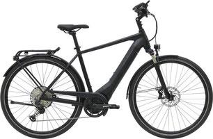 Hercules Pasero Trekking e-Bike 2019