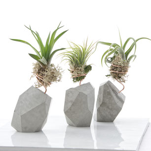 Fresh Easter Gift Ideas And New Concrete Designs By PASiNGA