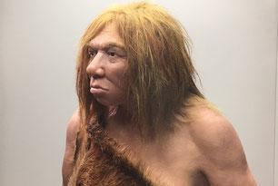 Recreación de una mujer neandertal en el Museo Arqueológico de Asturias / UCM