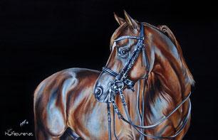 "Pferdegemälde Dressurpferd und Araberhengst ""Bolero Ibn El Sueno"""