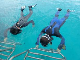 石垣島でのんびりダイビング「卒業旅行」ヒートハートクラブ