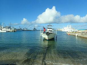 石垣島でのんびりダイビング「冬休み」ヒートハートクラブ