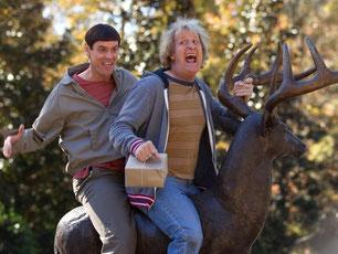 Die Freunde Lloyd Christmas (Jim Carrey, l) und Harry Dune (Jeff Daniels). Foto: Hopper Stone / Universal Pictures