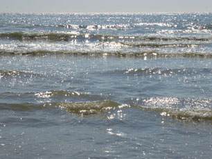 Marianne Dietz-Grebe, Ausbilderin und Seminarleiterin für Walking-In-Your-Shoes vor grünem Hintergrund