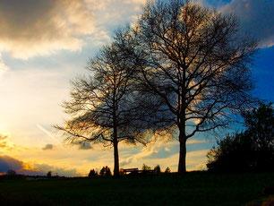 der Himmel, vom Abendlicht vergoldet