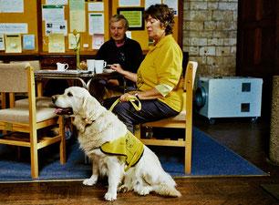 Kiki - ein aufmerksamer Blinden-Hund mit seinem Frauchen