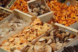 Pilze Markt