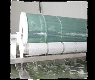 Filtration de l'eau de la Spiruline de Marc