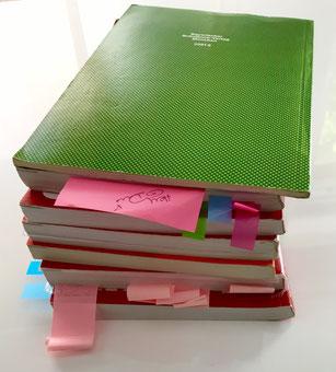 Nachhilfe plus, Wetzlar, Lerntipps, Tips, Tricks, lernen, leichter lernen, Hilfe, Nachhilfe, Wissen, Schulalltag