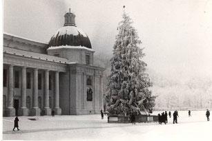 Vilnius.  Naujametinė eglutė (sv. aut. pastaba:apie 1986m)