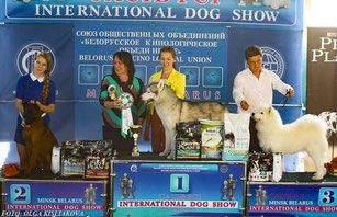 тайский_риджбек,выставка,чемпион,победитель,питомник,thairidgeback_dog,show,minsk,winner,mani_daeng_kennel,cacib