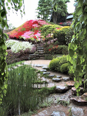 meilleurs spot photo ile de france jardin albert-kahn nature atypic photo