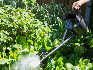 Die Longreach-Kannen der britischen Traditionsmarke HAWS eignen sich besonders für das Bewässern von breiten Beeten. www.the-golden-rabbit.de