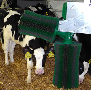 SCHURR calve-brush 2-brush-system