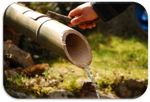 脊振天然水