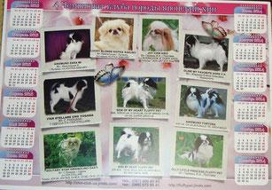 ВКП ЯХ-клуб породы японский хин, японские хины Украины, купить щенка японского  хина , Квитка Сакуры