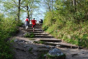 Kaiseraufstieg - Sparchenstiege